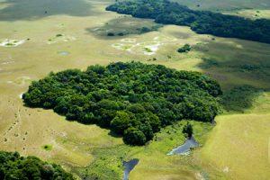 Habitat types in Loango