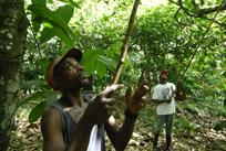 São Tomé people 2
